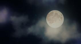 Night by Elie Wiesel: Symbols
