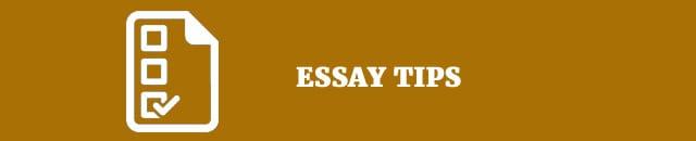 essay-tips