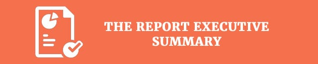 the-report-executive-summary