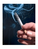 Essays about smoking