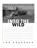 Into the wild reflection essay