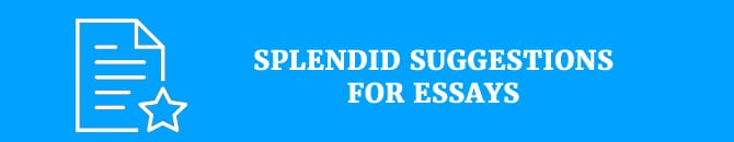 splendid-suggestions-for-essays
