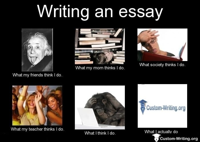 fun college majors writing a university essay