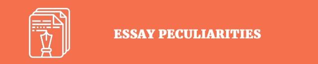 essay pecularities