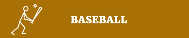 baseball sport topics speech