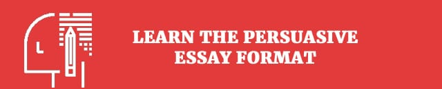 Learn the persuasive essay format