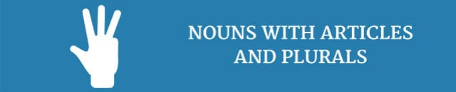 nouns-with-articles-and-plurals